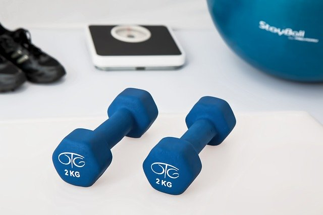 Workout equipment for physiotherapy at home